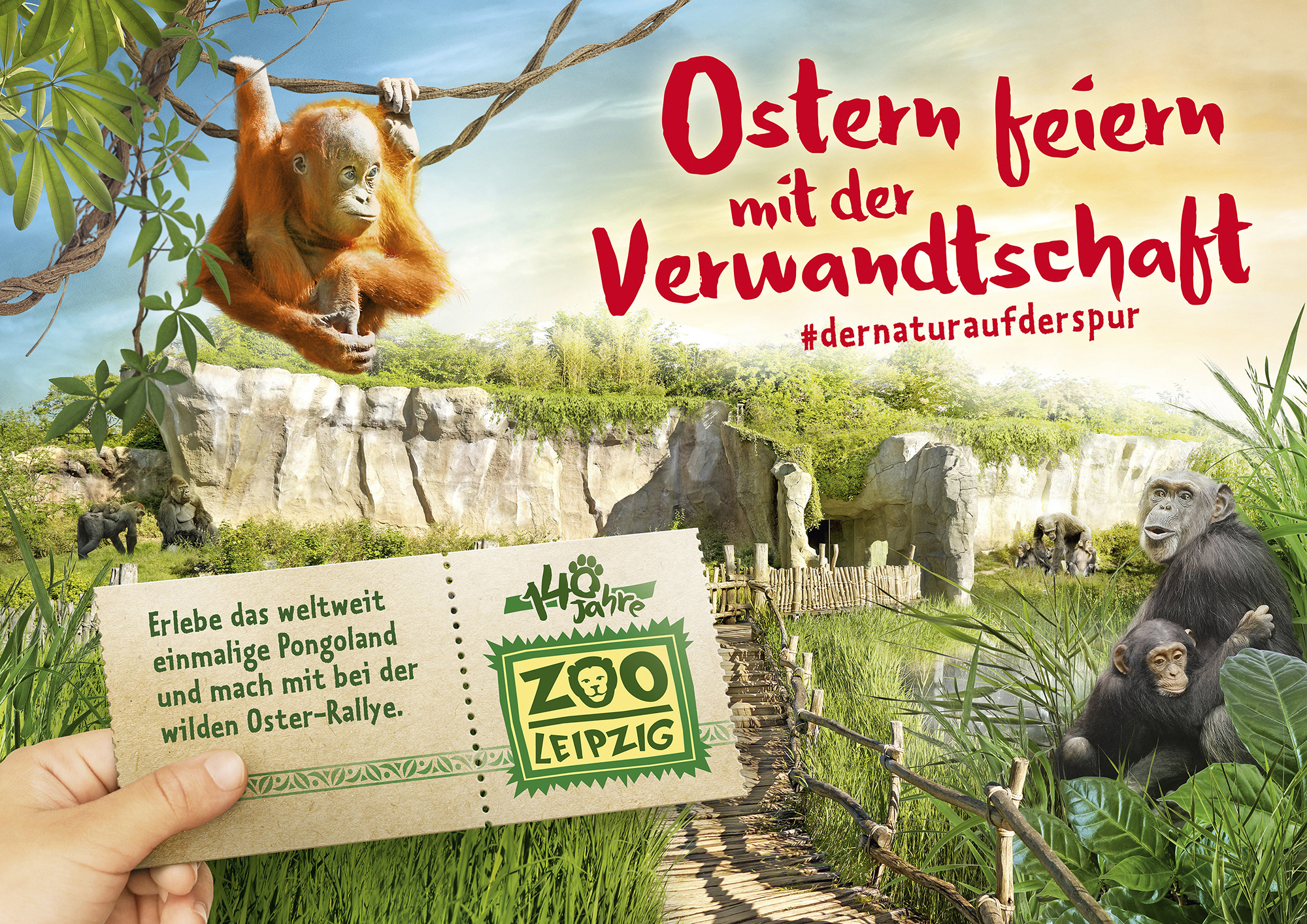 ETPTT, Zoo Leipzig, image editing, color correction, composing, clipping